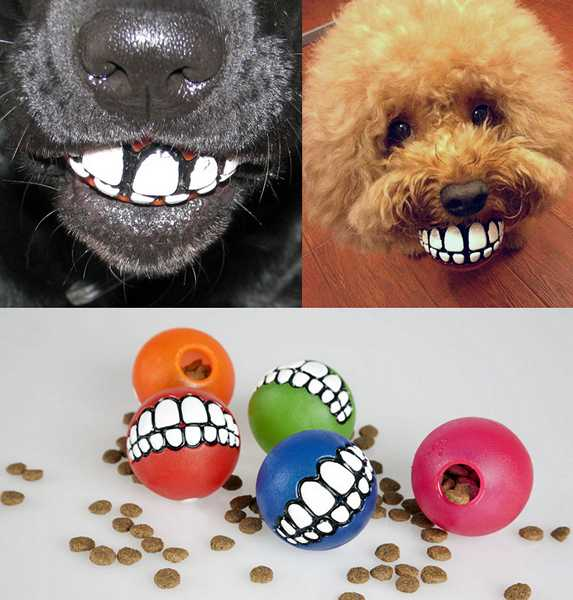 Rogz Grinz Smiling Dog Ball Toys Pet Design Idea That