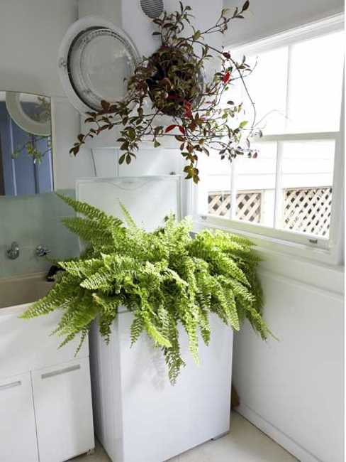 20 Laundry Room Ideas To Spruce Up Small Spaces With Color