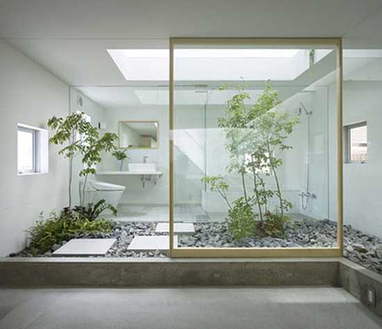 contemporary bathroom design with flass wall and indoor garden with plants and rocks