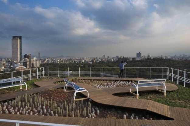 rooftop garden design in mexico