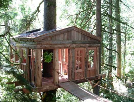 tree house with large windows
