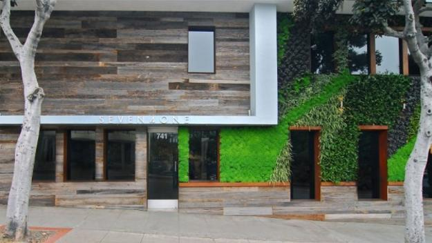 salvaged wood and green wall design