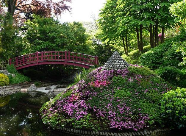 Japanese Garden Design With Pond Bridge And Flowering Plants
