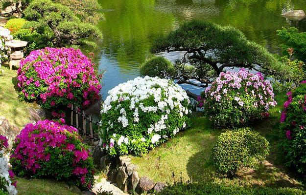 Beautiful Japanese Garden Design, Landscaping Ideas for ... on Small Backyard Japanese Garden Ideas id=36041
