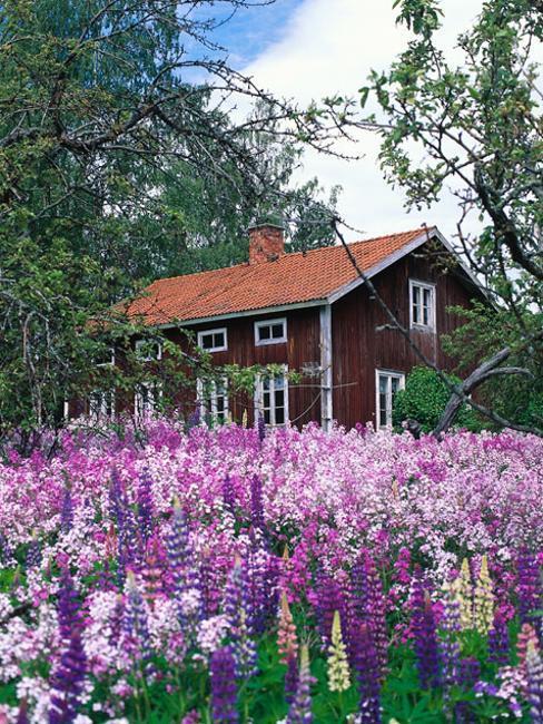 Natural backyard landscaping ideas save money creating - Small backyard landscaping ideas ...