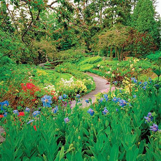 Natural Backyard Landscaping Ideas Save Money Creating