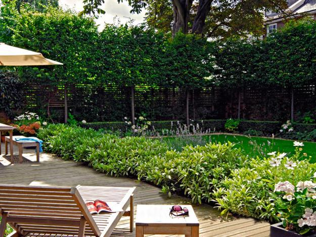 Backyard Renovation Ideas Diy Best Landscape