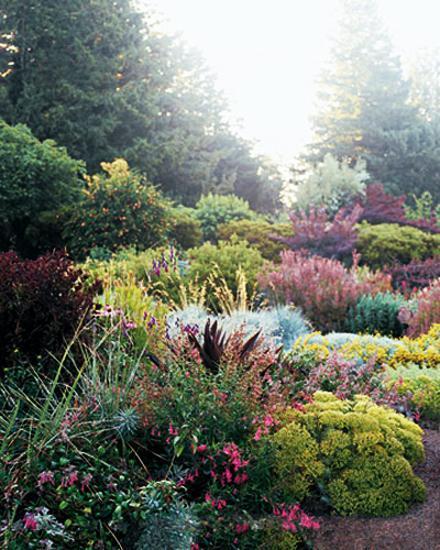 Natural Backyard Landscaping Ideas, Save Money Creating