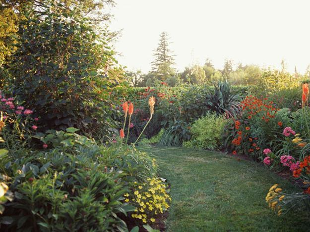 backyard landscape natural backyard landscaping ideas save money creating wildlife