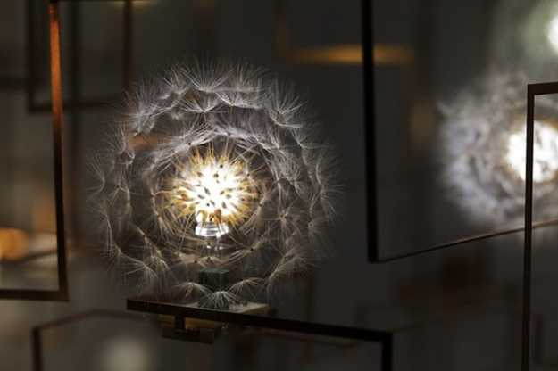 modern lighting fixture that looks like dandelion