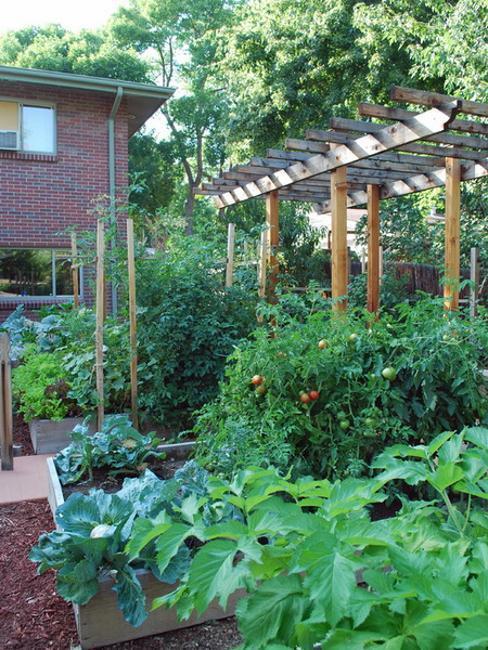 20 Raised Bed Garden Designs And Beautiful Backyard
