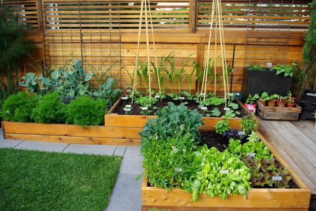 Beautiful Backyard Landscaping Ideas, Green Lawn And Raised Bed Garden  Design