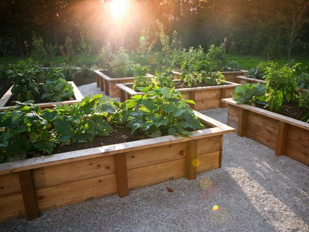 20 Raised Bed Garden Designs and Beautiful Backyard ... on Backyard Raised Garden Bed Ideas id=79000
