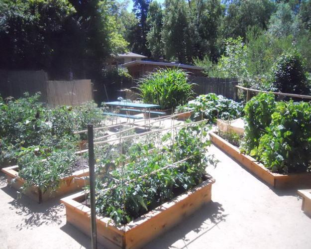 20 raised bed garden designs and beautiful backyard for Pretty raised vegetable garden