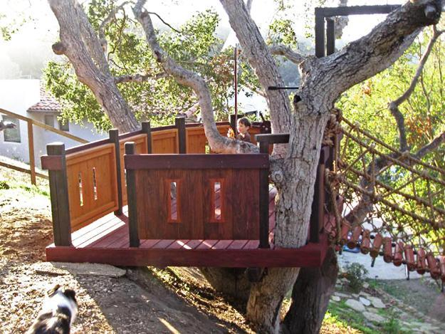 30 Tree Perch And Lookout Deck Ideas Adding Fun Diy