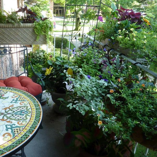 5 Ways To Decorate Your Deck With Plants: 33 Small Balcony Designs And Beautiful Ideas For