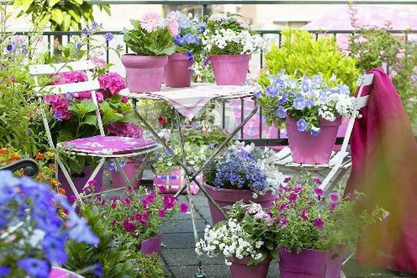 Colorful Flowerpots For Small Balcony Decorating With Flowers