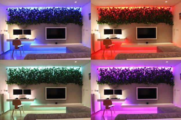 Contemporary Apartment Ideas For Decorating With Indoor Plants And Color Changing Lights