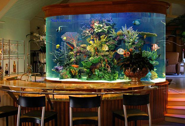 35 Unusual Aquariums and Custom Tropical Fish Tanks for Unique ...