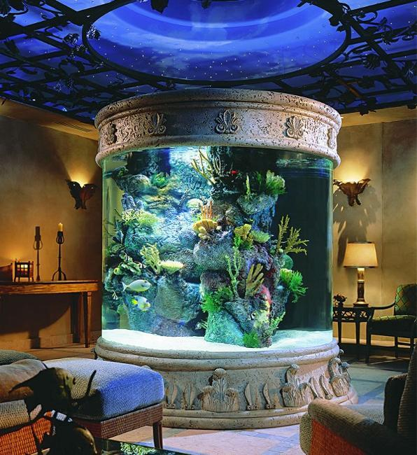 Eco Home Design Ideas: 35 Unusual Aquariums And Custom Tropical Fish Tanks For