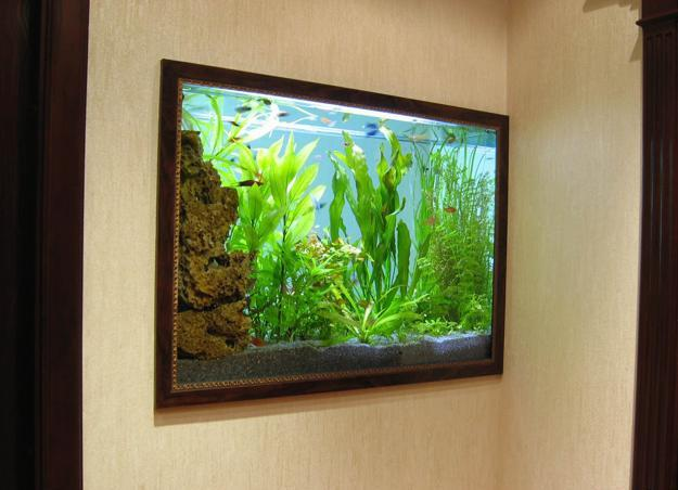 modern interior design with fish aquariums