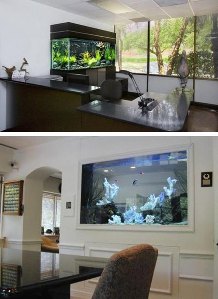 spectacular aquariums personalizing interior design with colorful rh lushome com