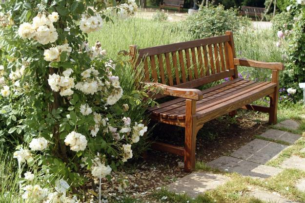 wooden bench for garden design and backyard landscaping