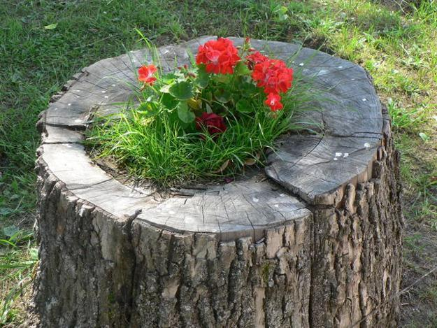 recycling tree stump for planter and decorating with flowers