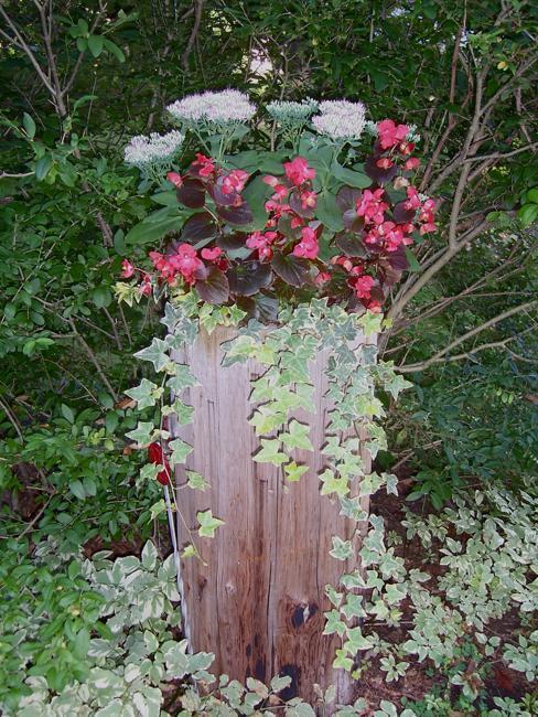 Yard Gravel Landscaping