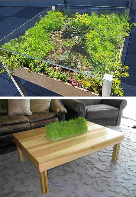 Modern Tables with Miniature Gardens and Grass