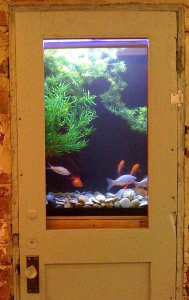 Unusual Built In Aquariums Adding Beautiful Green Ideas To Home Decorating