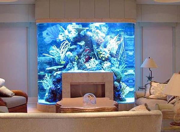 Stunning Tropical Living Room Design