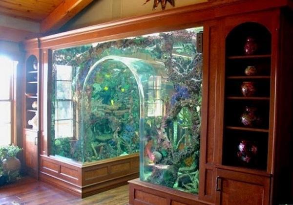 Unusual Built In Aquariums Adding Beautiful Green Ideas To