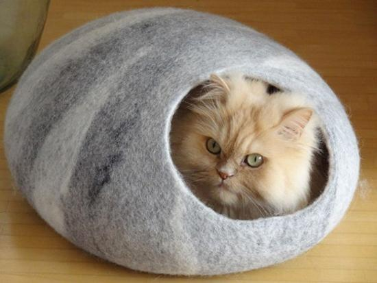 Felted Pet Beds And Caves For Cats Offering Modern