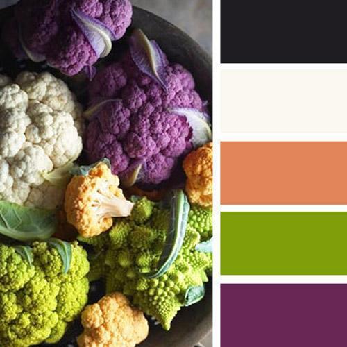 Orange Green Purple Room: 33 Orange Color Schemes, Inspiring Ideas For Modern