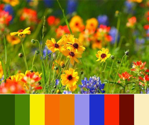 33 orange color schemes inspiring ideas for modern - Green yellow color scheme ...
