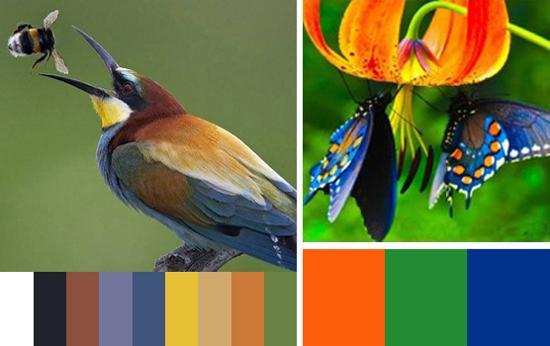 33 Orange Color Schemes Inspiring Ideas For Modern
