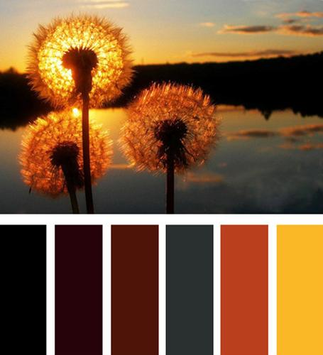 Relaxing And Calming Interior Decorating Color Schemes With Dark Gray Brown Orange Colors