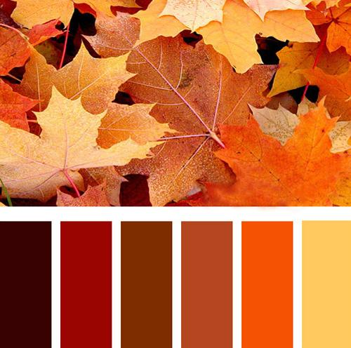 Fall Leaves Inspired Bright Orange Color Scheme