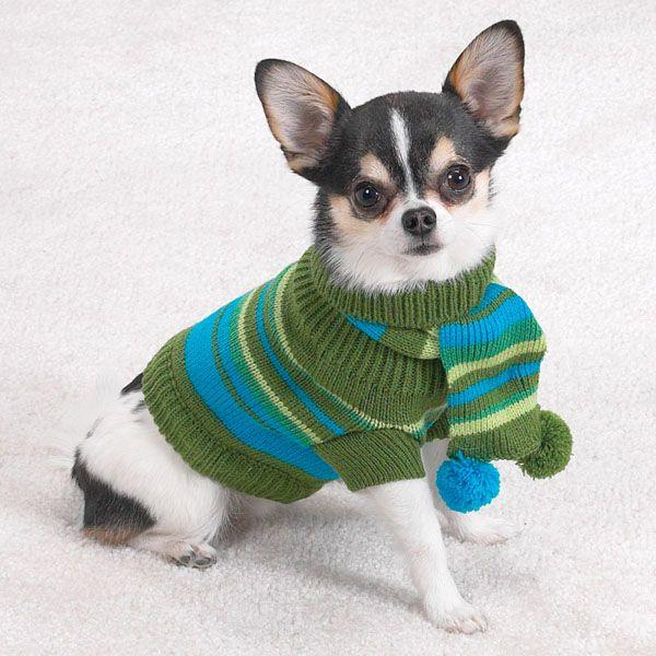 Sweaters For Small Dogs