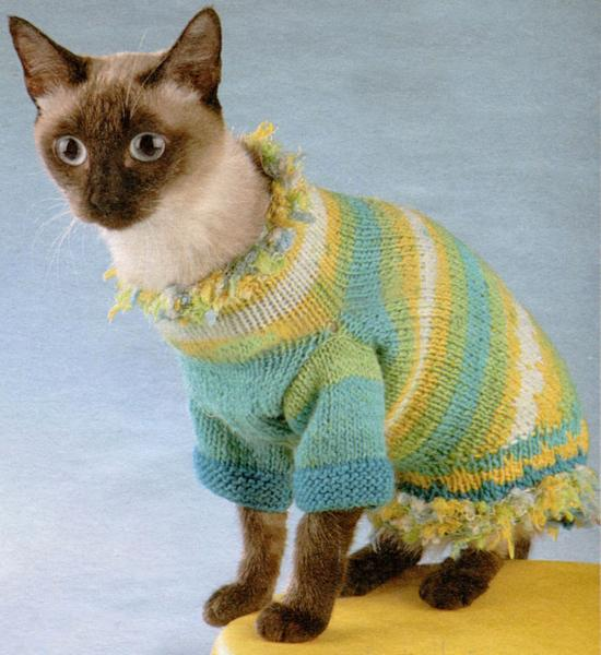 30 Knitted Hats And Sweaters For Cats And Dogs Modern Pet