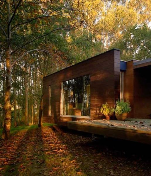 cabins cottages and modern houses built in forest