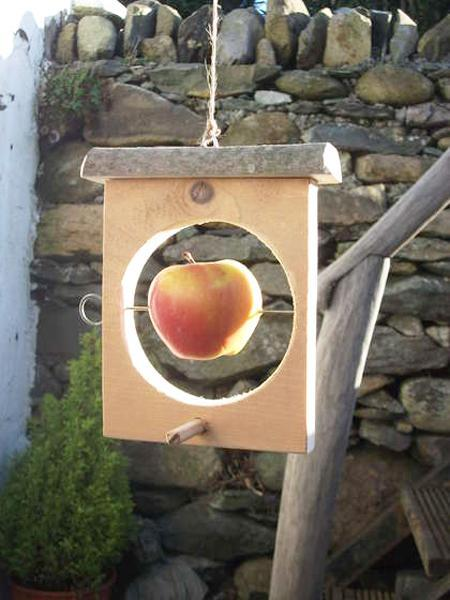 Simple bird feeder design with a clip