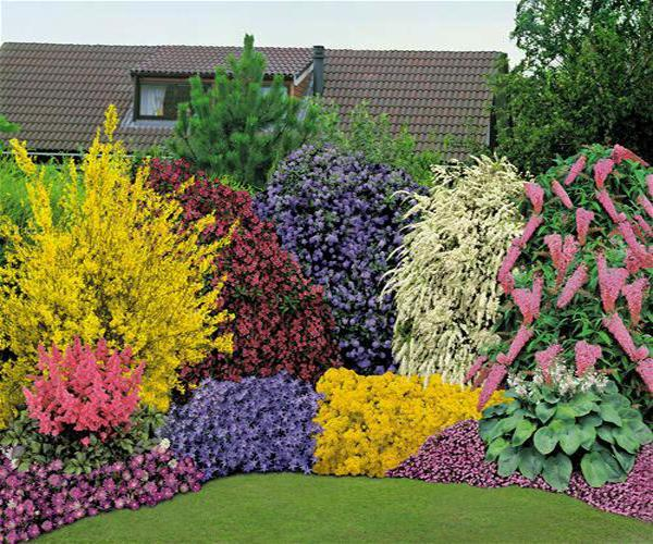 33 beautiful flower beds adding bright centerpieces to for Best plants for front flower bed