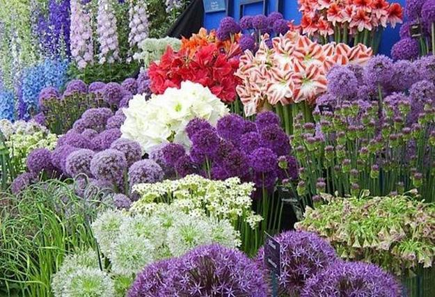 33 Beautiful Flower Beds Adding Bright Centerpieces to ... on Flower Bed Ideas Backyard id=18977