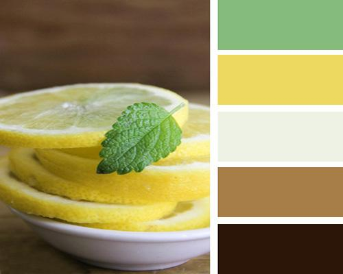 White Bright Yellow Light Green And Brown Color Schemes