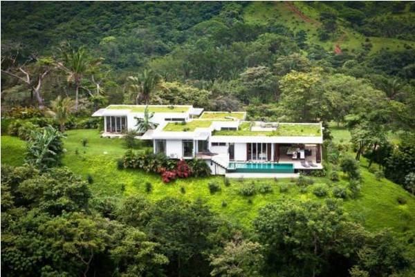 Modern Houses With Green Roof Designs Offering Eco Friendly Alternatives