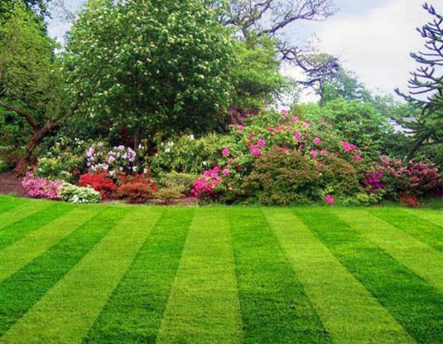 Striped backyard landscaping with green grass and blooming flowers - Perfect Green Lawns And Yard Landscaping Ideas In Spring And Summer