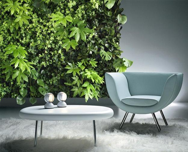 modern interior design and wall decorating with green plants