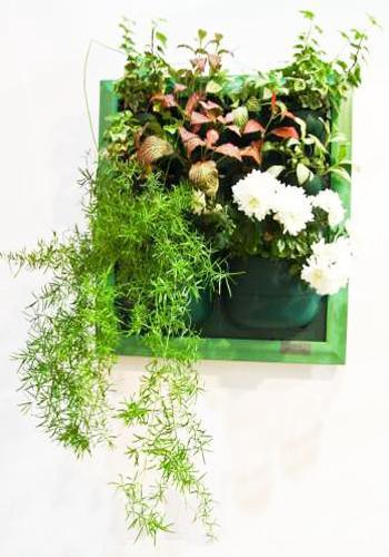 Going Green Modern Interior Decorating And Green Wall Design
